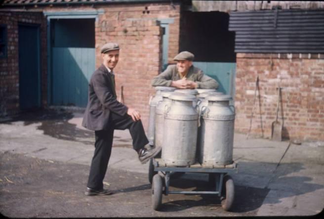 grandad milking